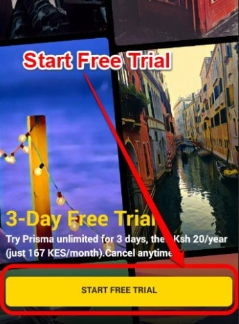 3-Day Trial Period - Download Prisma for PC